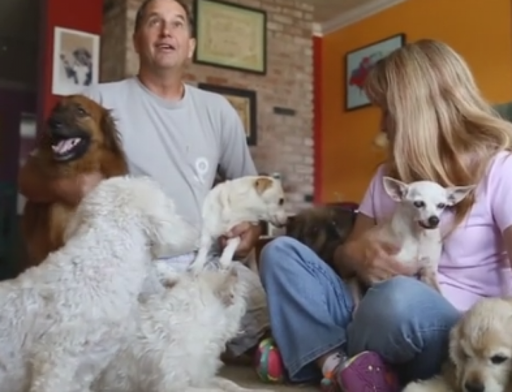Joann and Dennis and their Rescues